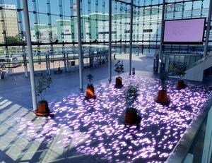 夜の福井駅西口、春は光の桜舞う