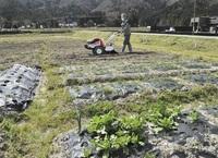農業で地域元気に 貸農園利用者募る 小浜の農業法人