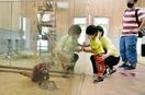 西山動物園、2カ月ぶりに営業再開