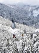 銀世界を滑空、冬のジップライン