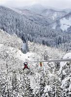 雪景色を見ながらのジップライン。白く染まった森に吸い込まれていくよう=25日、福井県池田町