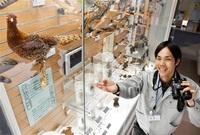 市自然史博の出口さん 学芸員が「鳥博士」に 働きながら博士号 「面白さ伝えたい」