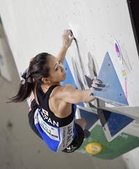 アジア制し東京五輪女王へ Sクライミングの野口 スポーツランド