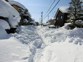 雪が降り積もった住宅地内の市道=9日、福井県坂井市