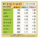 野菜のお値段 8月12日の週