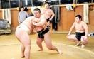 【頂への挑戦】相撲 成年4強へ充実