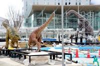 大型恐竜3体、福井駅玄関に帰還