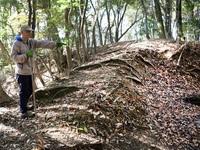 戦国期の後瀬山城 歴史講座で学ぼう 27日、小浜・本境寺