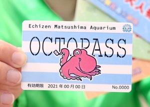 越前松島水族館、貸せる年パス販売