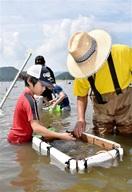 久々子湖で伝統のシジミ漁体験