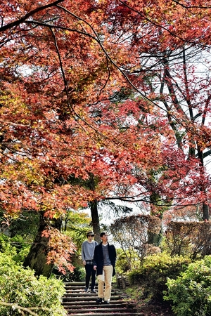 西山公園の紅葉見頃
