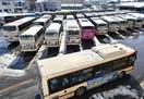 京福バス一般路線18日は全線運行