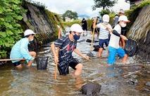 大野の富田小児童が川で生き物調査