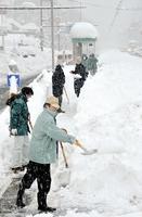 福井鉄道の依頼で仁愛女子高校停留所の雪かきをする福井県と福井市の職員=2月7日午前11時45分、福井市