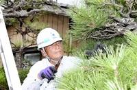 70歳でも現役 働くことで人生充実 ふくいを生きる 第10景 シニア(8)