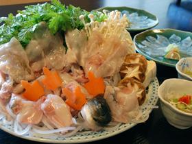 朝仕入れた新鮮な魚の刺身、寿司、一品料理が味わえる