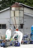 岐阜・恵那で新たに豚コレラ