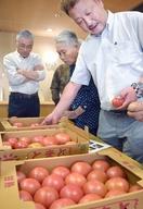 大玉トマトの「紅しきぶ」高品質
