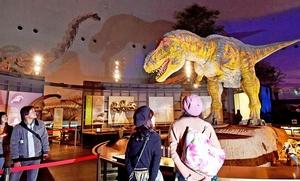 年末年始の開館日を拡大する福井県勝山市の県立恐竜博物館