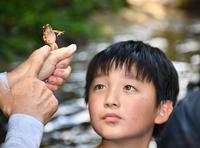 若狭町の川で児童らが生き物観察
