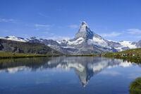 名峰望む絶景ハイキング 搾りたての甘い牛乳も スイス 旅すれば