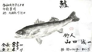 山田さん(坂井市)が釣ったスズキの魚拓