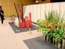 自作花器に生け花色とりどりの22点 敦賀で草月…