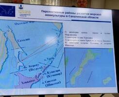 ロシア極東サハリン州の会合で使われた、北方領土を日本領と色づけした地図(サハリン・インフォ提供、共同)