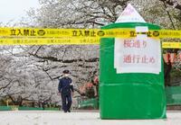 東京都、花見の名所を突然規制