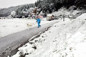 雪が積もった福井市の山間部=24日、福井市南西俣町