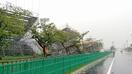 強風で福井国体会場の骨組み倒壊