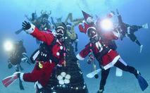 海中彩るクリスマスツリー