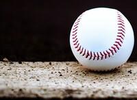 春の高校野球福井県大会、開催へ準備