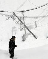 ずり落ちてきた工場の屋根雪に押され傾いた電柱=8日午後1時40分、福井県坂井市内