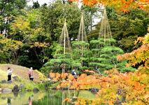 養浩館庭園はや冬の装い