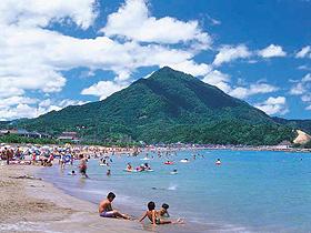青葉山を望むビーチ。ハマナスが植えられ散策にも最適
