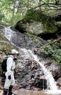 青葉山の麓に滝、写真愛好家が発見