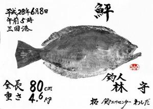 林さんのヒラメ魚拓