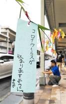 収束、健康願う七夕 小浜・YEG 商店街に竹取…