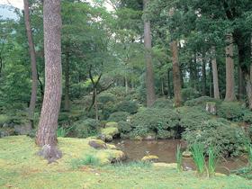 鎌倉~室町期の特色を残した池田郷の豪族・梅田氏の庭園