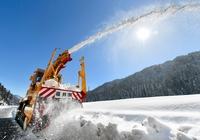 福井の大雪収束、普段の暮らしへ