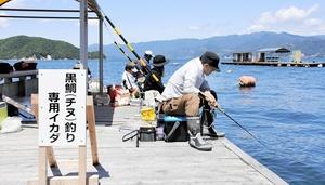筏釣りに熱中する釣り客=5日、福井県敦賀市名子