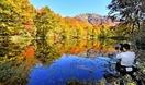 刈込池の紅葉見頃、登山者大感激
