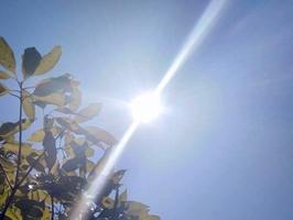 照りつける太陽=5月25日、福井県福井市内