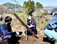 朝日地区に桜増やそう 越前町・丹生高生や住民植樹 みんなで読もう