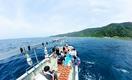 福井の海や里、山舞台に45の体験