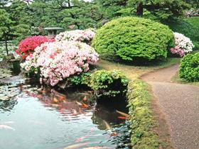 文人、墨客が愛した芦原の宿。日本庭園は全客室から見える