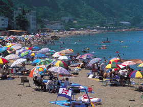 穏やかなな海岸線に美しい砂浜が続く