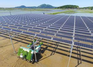 「ソーラーシェアリング」の設備が設置された水田で行われた田植え作業=19日午後、秋田県井川町(小型無人機から)