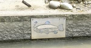 農業用水の護岸の壁面に取り付けられた絵のパネル=福井県福井市